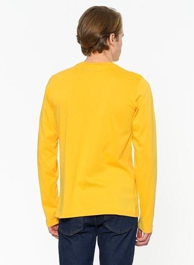 Galatasaray Sweatshirt Renksiz